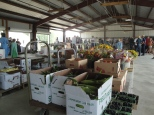 Though mainly a wholesale auction, smaller lots of locally grown vegetables, fruit, and flowers are available to the general public.