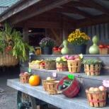 Moore or Less Farm has a wide selection of fresh seasonable vegetables, flowers, and plants