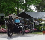 Local Amish and Mennonite families sell their produce at the North St. Mary's County Farmers Market.