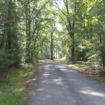 Trails at Newtowne Neck State Park take visitors through a variety of wildlife habitats.