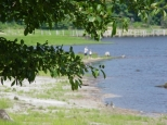 Fishing from shore is a popular activity at St. Mary's River State Park.