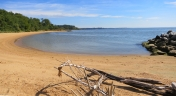 Discover Newtowne Neck State Park's extensive shoreline.
